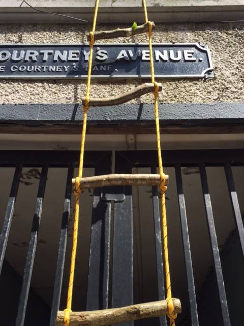 guest ladder 2